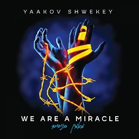 yaakov-shwekey-we-are-a-miracle