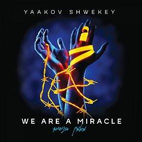 yaakov-shwekey-we-are-a-miracle