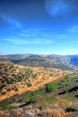 Shomron Hills