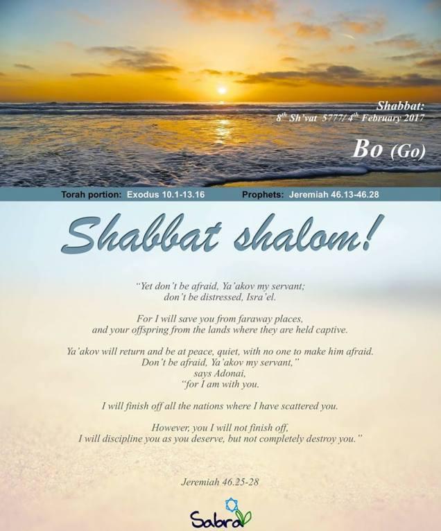 shabbat-shalom-bo